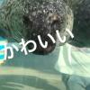 レセプション小田の楽しい休日☆★